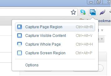 Google Screen Capture Options