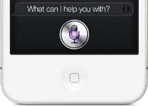 Siri Home Button
