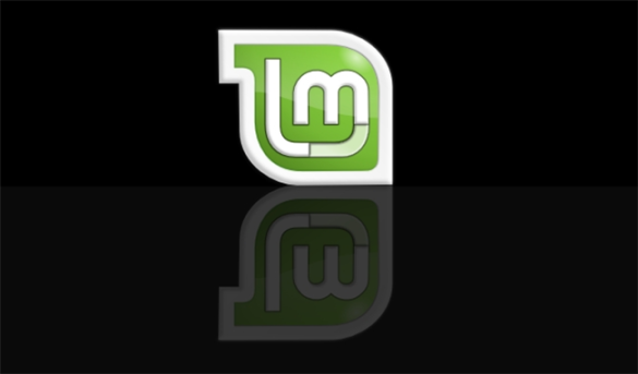 dual boot and linux mint